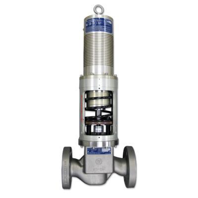 YF 3010E620 Series Electric Fuel Metering Unit Spring Detail